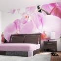 fototapeta obývací ložnice