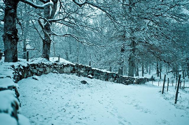 winter-964492_640