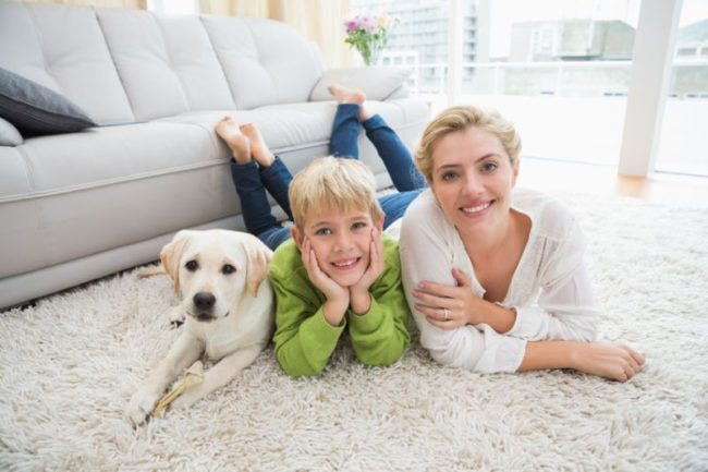31881428 - happy mother and son with puppy at home in the living room