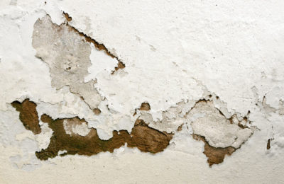 55432382 - bubbling and peeling paid as a result of rising damp